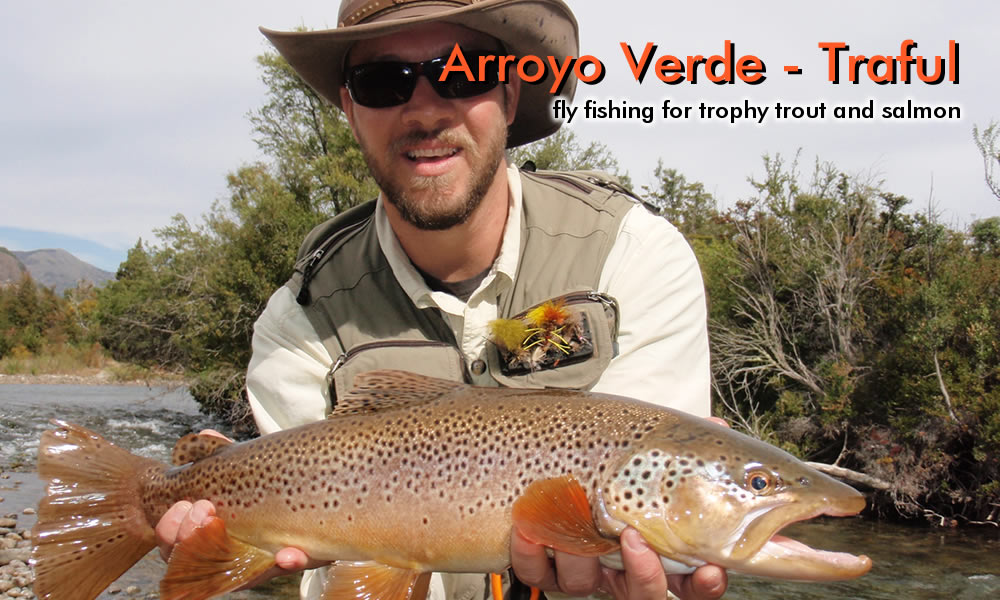 Traful river brown trout photo