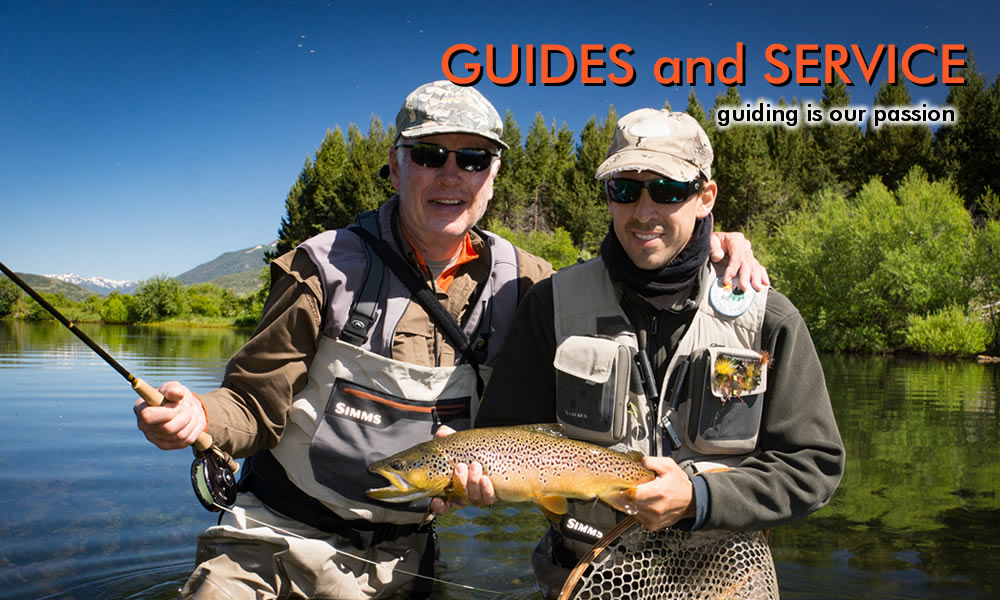 quiller river brown trout photo