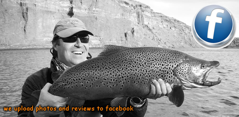 a beautiful big brown from the middle limay river